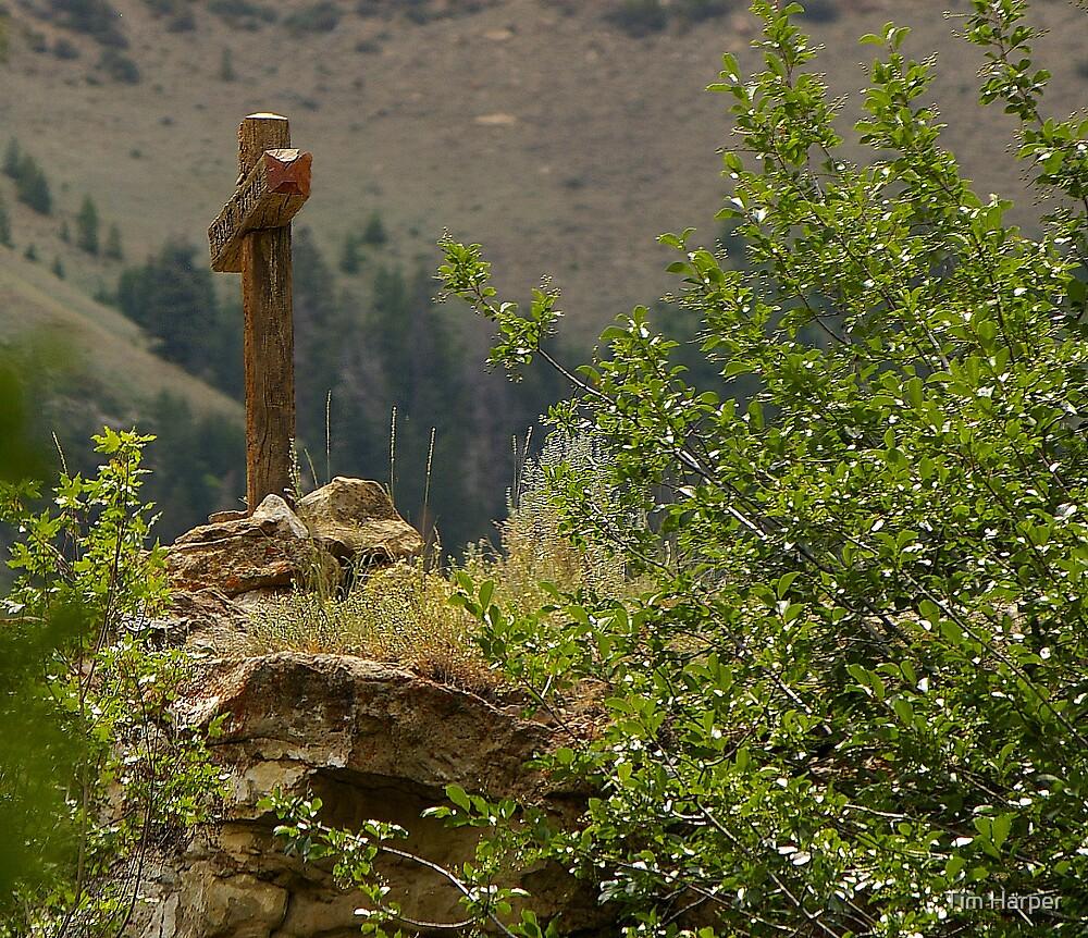 Wooden Cross by Tim Harper