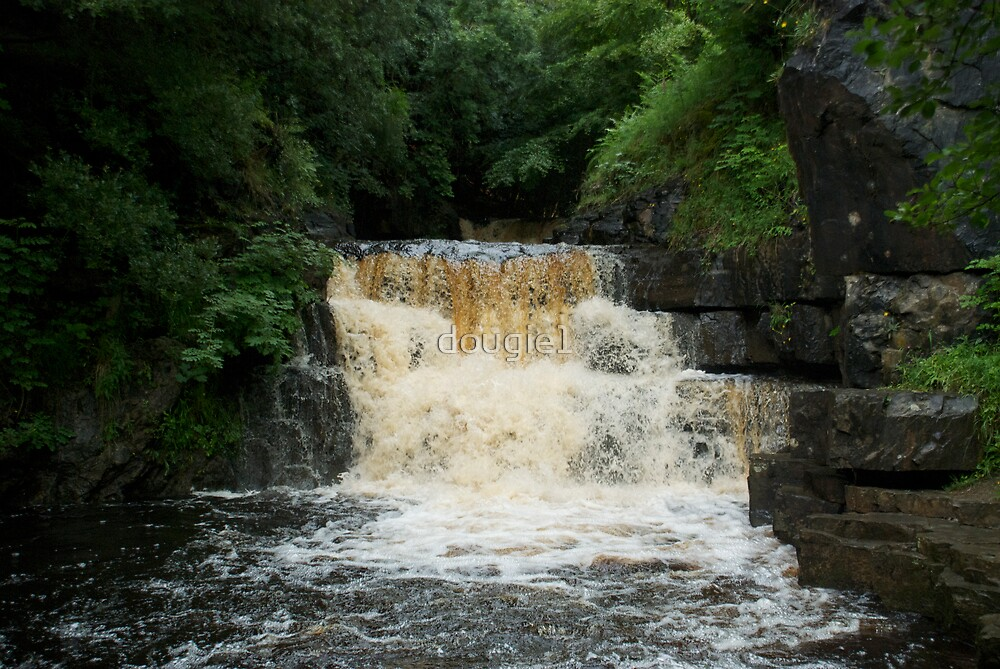 Summerhill force by dougie1