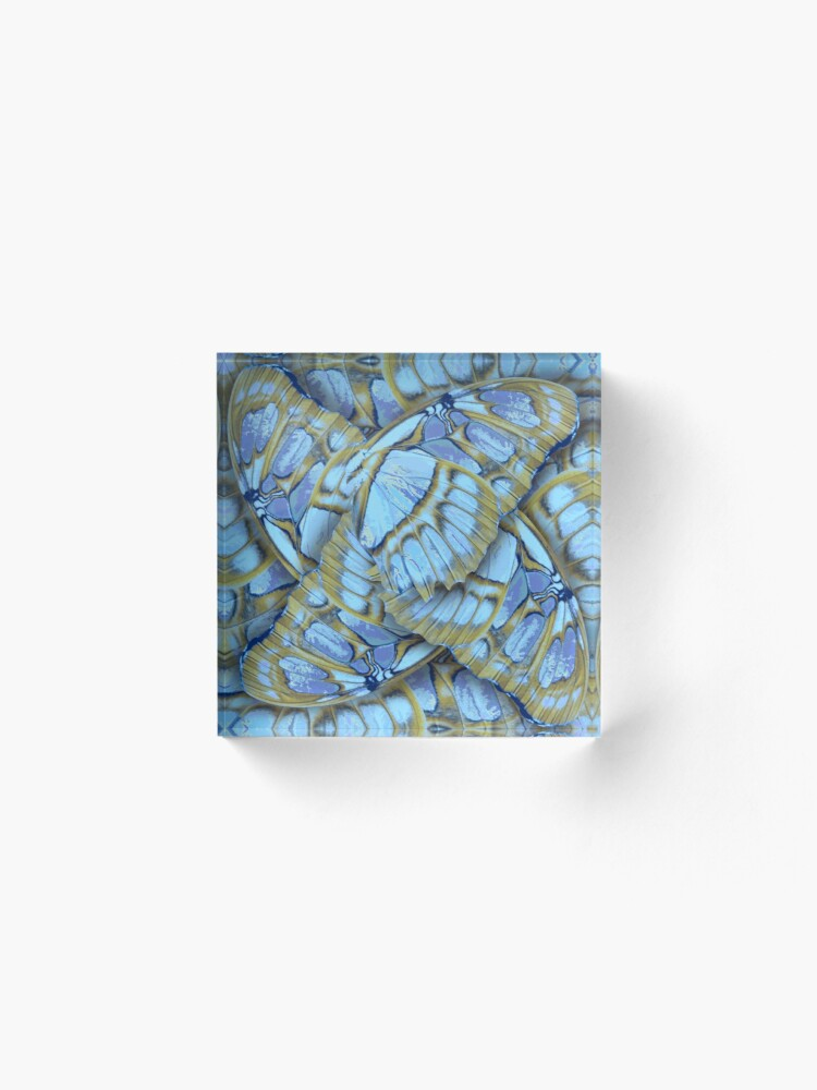 Alternate view of BLUE WINGS  – Wing Series Acrylic Block