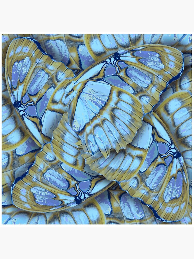 BLUE WINGS  – Wing Series by M-ohlala