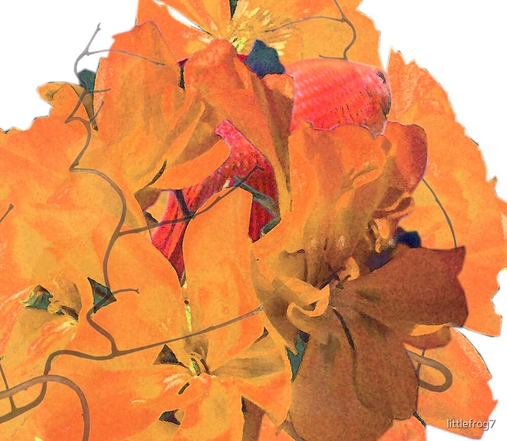TJ in Flowers by littlefrog7
