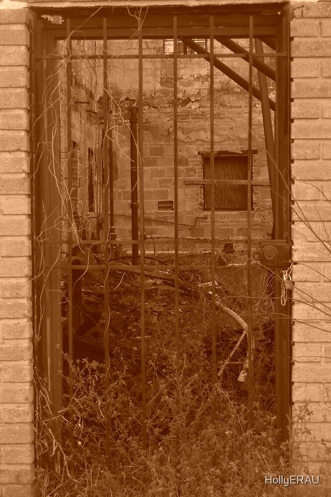 Door 1 by HollyERAU