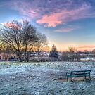 Harrowlodge Park HDR 01 by Peter Barrett