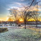 Harrowlodge Park HDR 03 by Peter Barrett
