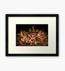 Autumnal still life composition Framed Print