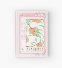 Peach Paint Hardcover Journal