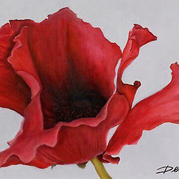 Red Poppy by Dianna Derhak by DiannaDerhak