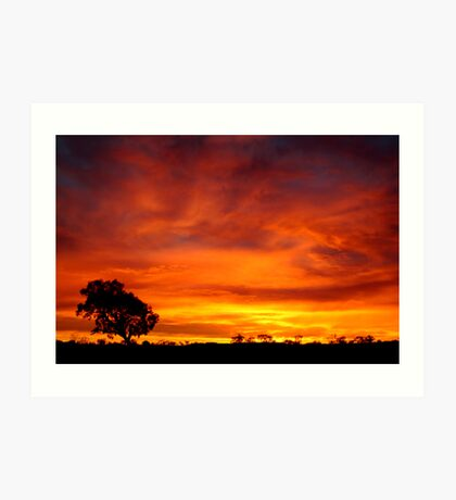 Sunrise, Batton Hill,Simpson Desert,N.T.  Art Print