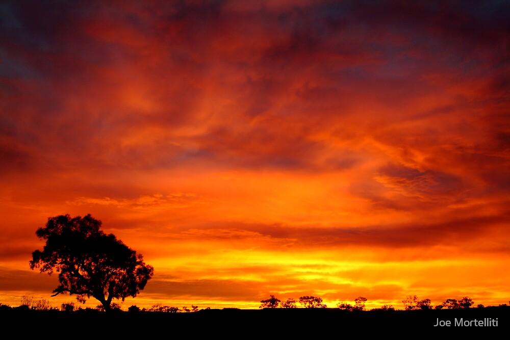 Sunrise, Batton Hill,Simpson Desert,N.T.  by Joe Mortelliti