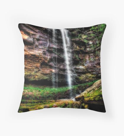 Stahle Falls Throw Pillow