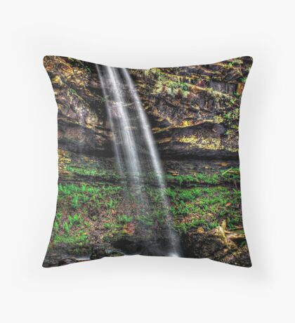 Wood's Boys Falls Throw Pillow