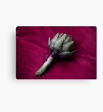 Artichoke heads on red background Canvas Print