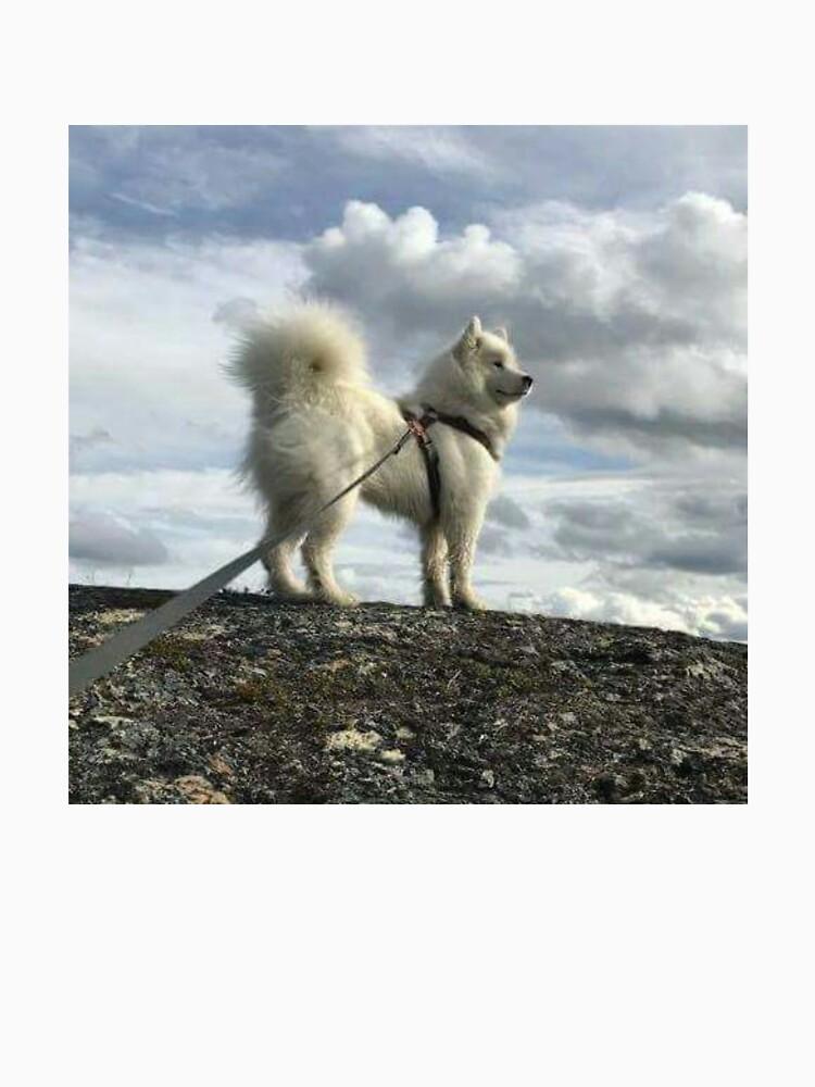 White Dog by MASQ