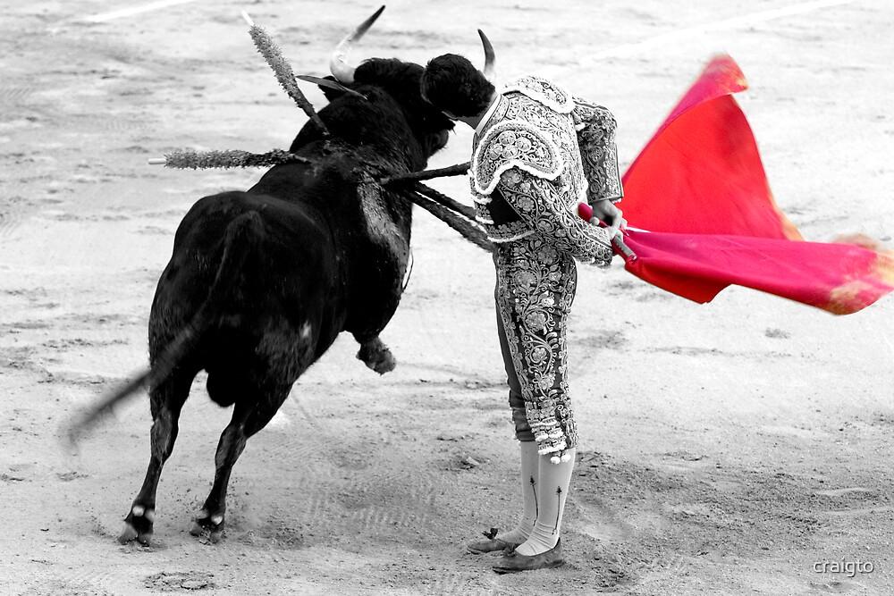 Matador and Bull. 4 by craigto