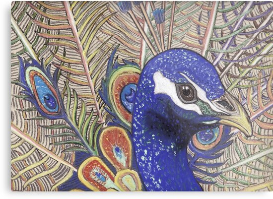 Peacock 2 by MagsWilliamson