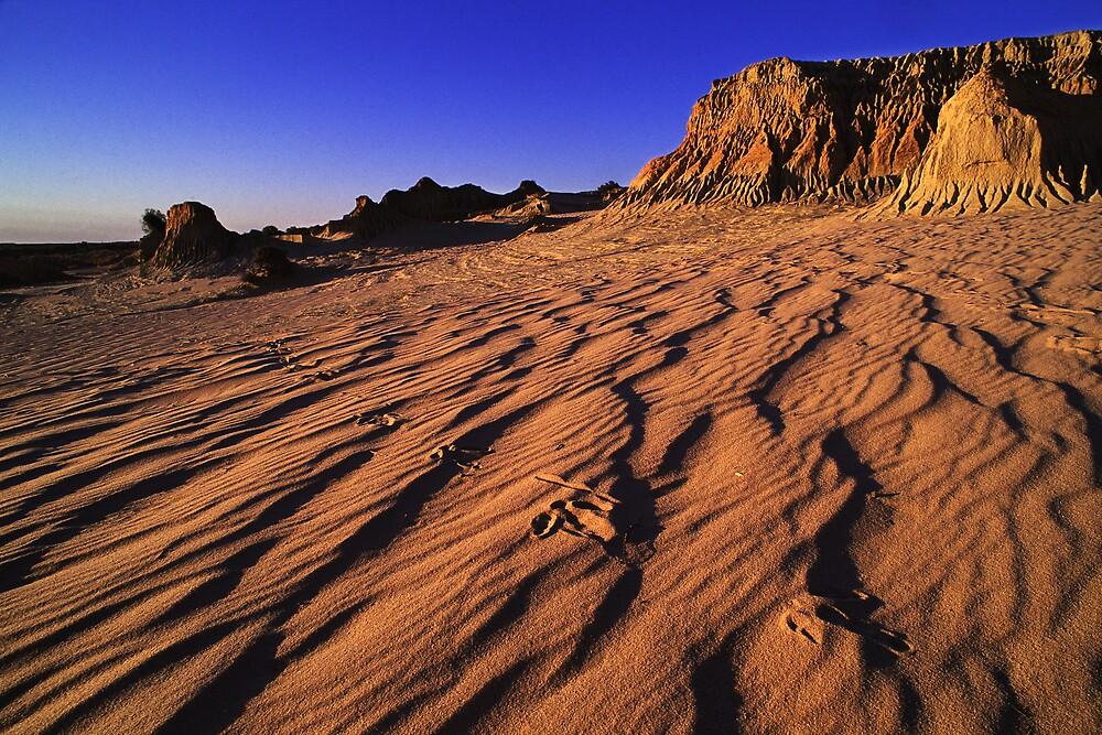 Mungo footprints.  by DaveBassett