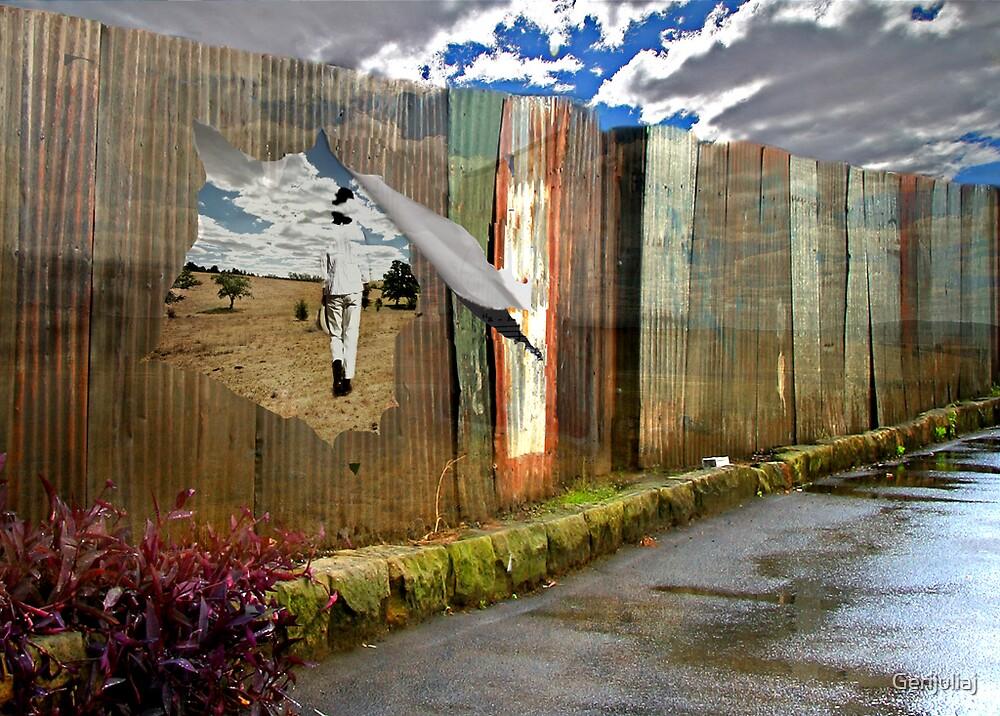 Beyond the Back Yard by Gerijuliaj