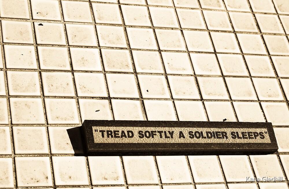 Tread Softly by Kane Gledhill