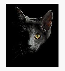 Shadow Cat Photographic Print
