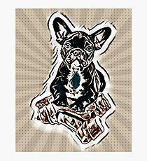 Dogs 7. Photographic Print