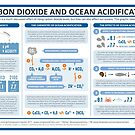 The Chemistry of Ocean Acidification by Compound Interest