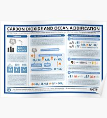 The Chemistry of Ocean Acidification Poster