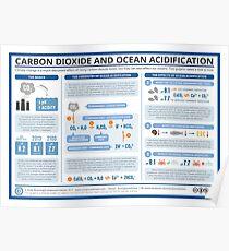 Die Chemie der Ozeanversauerung Poster