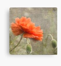 100 Years - In memory of fallen soldiers WW1 Canvas Print
