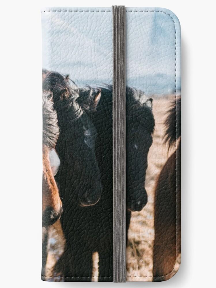 Horses in Iceland - Wildlife animals by Michael Schauer