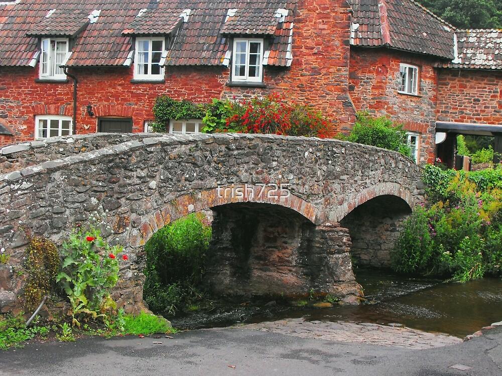 My England.  Packhorse Bridge at Allerford Somerset, England by trish725