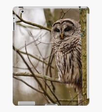 Barred Owl - Presqu'ile Park iPad Case/Skin