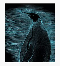 Penguin scraperboard - Blue Photographic Print