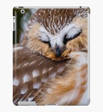 Northern Saw Whet Owl - Ottawa, Canada iPad Case/Skin