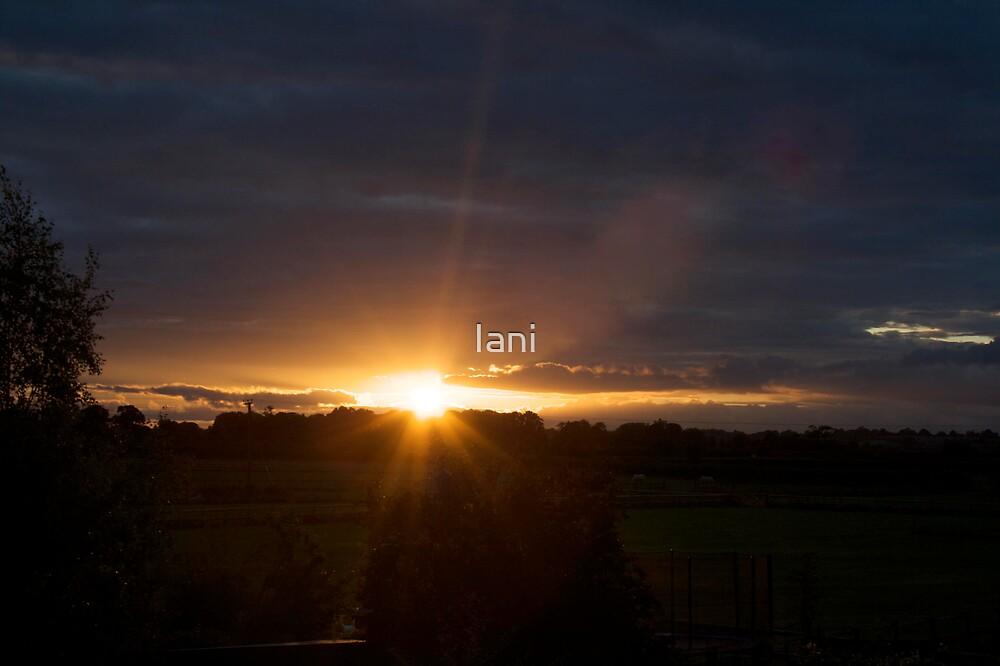 Blinding Sunset by Iani