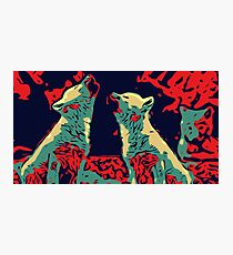 Baby Wolves Vector Photographic Print