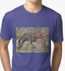 Zebra - African Wildlife - Paired up for Life Tri-blend T-Shirt