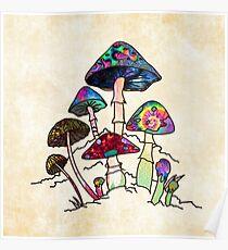 Garten von Shroomz Poster