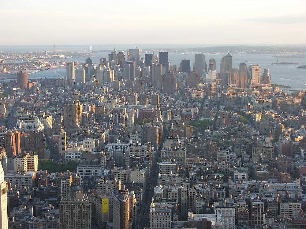 Manhattan by tyty