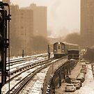 Snowy Day In Bronx  by Alberto  DeJesus
