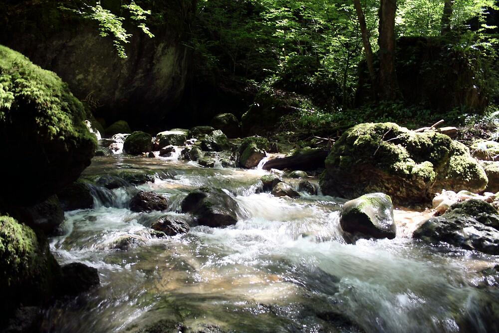 Kaltbrunnenthal Stream by FortnightA