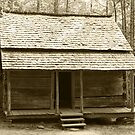 John Ownby's Cabin II by Gary L   Suddath