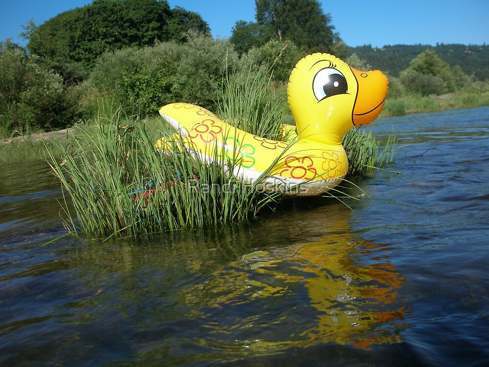 Yellow Duck by Randi Hoskins