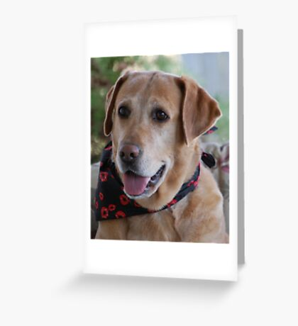 My Girl Greeting Card