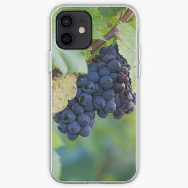 grape and vineyard iPhone Soft Case