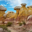 Colorado Paint Mines Formations by Bo Insogna