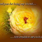Thankyou For Being My Friend by EnchantedDreams