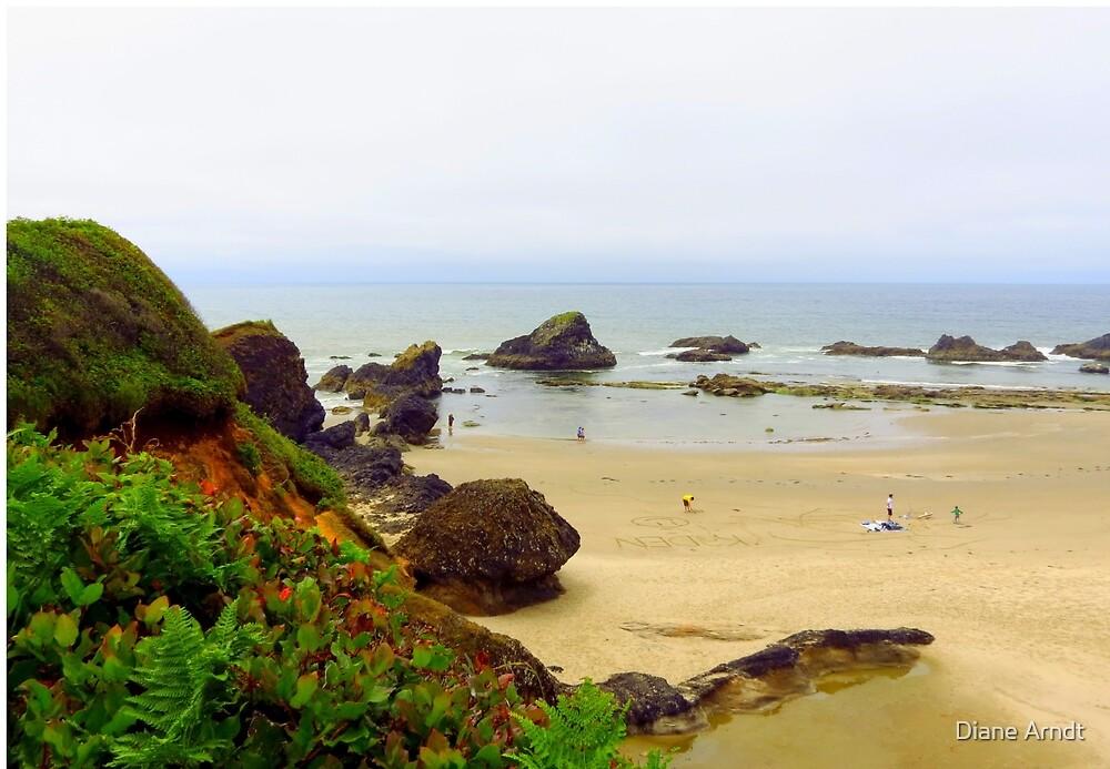 Fun On The Pacific Coast...Near Seal Beach, Oregon by Diane Arndt