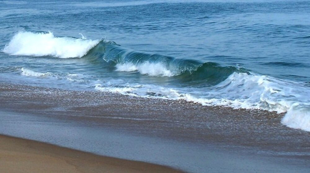Ride the Wild Surf by Judi Taylor