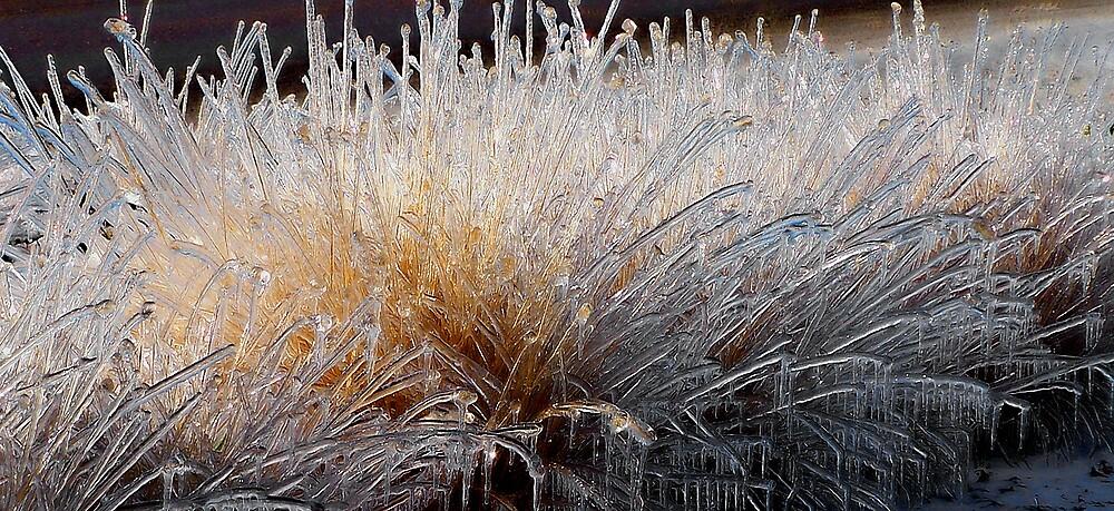 Frozen Outcroppings by Robert Serpan