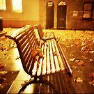 the golden night by Una Bazdar